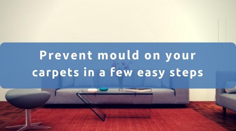 Carpet Mould Prevention