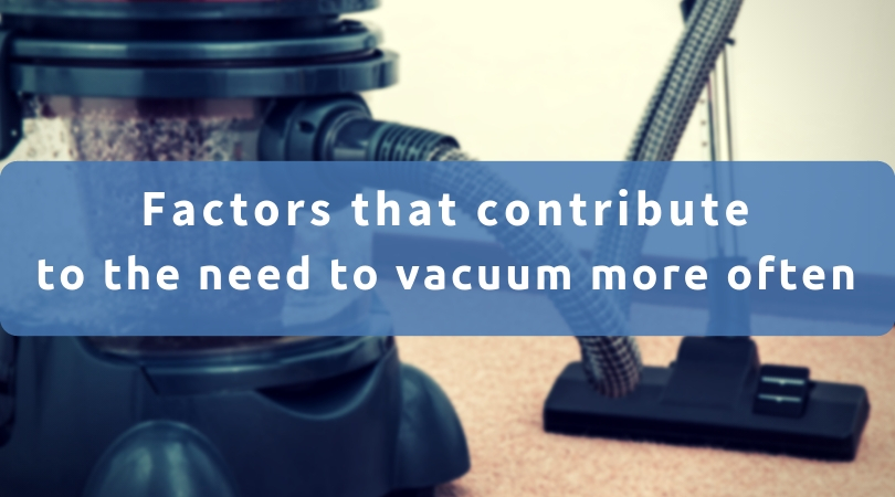 Factors That Show You Need More Vacuuming
